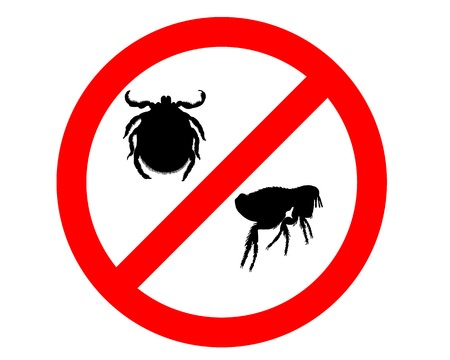 prevent fleas and ticks icon